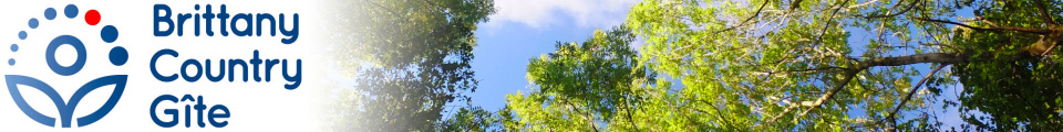 banner at top of page showing our logo and photo of tree canopy with blue sky